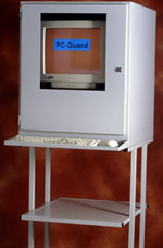 Computer enclosure printer stand